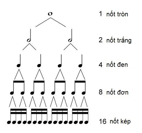 các nốt trong piano -tự học piano online