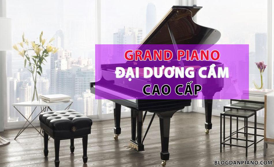 Grand Piano Là Gì - Grand Piano Cao cấp