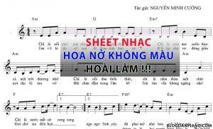 sheet nhạc HOA NỞ KHÔNG MÀU piano guitar